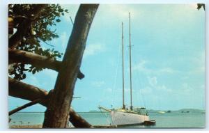 *B62 Sailboat at Shore Puerto Rico Old Vintage Postcard