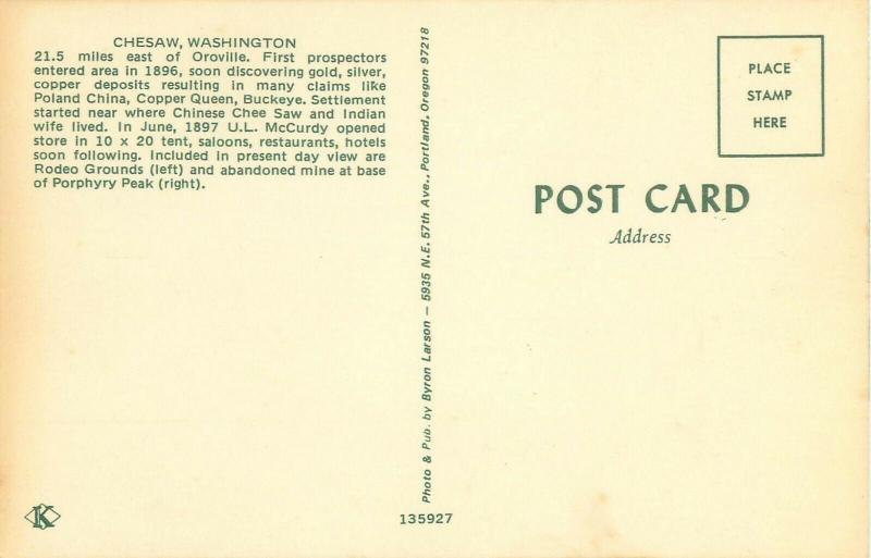 Chesaw Washington Bird's Eye View Postcard