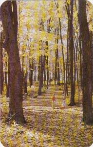 Ohio Newbury Punderson State Park