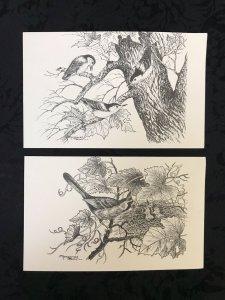 Vintage Nuthatch & Cardinal by Margaret Blair Wildlife Birds Postcard