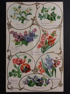 Art Nouveau c1908 Wonderful Language of Flowers Postcard by K.F.Editeurs, Paris