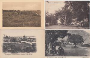 DAHOMEY BENIN 50 Vintage AFRICA Afrique Postcards Mostly pre-1940
