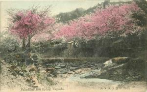 C-1910 hand colored Japan Postcard Nakashima Hot Springs 4521