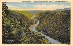 Pine Creek Gorge near Wellsboro - Wellsboro, Pennsylvania PA