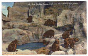 Bear Pit, The Chicago Zoological Park at Brookfield, Illinois