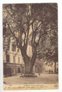 Place Du Frene (Plante Sous Henri IV), Vence, Alpes Maritimes, France, 1900-1...