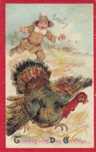 AS; BRUNDAGE, 1911; Thanksgiving Day Greetings, Pilgrim chasing wild turkey