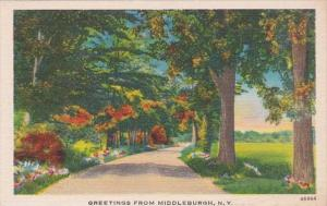 New York Greetings From Middleburgh