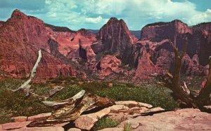 Zion Nat'l Park, Utah, UT, Kolob Canyons Area, Chrome Vintage Postcard g6351