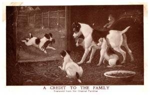 Dog  Hunting Dogs