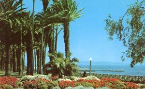 CA - Santa Monica. View in Palisades Park