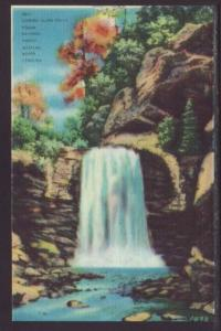 Looking Glass Falls,Pisgah Forest,NC Postcard