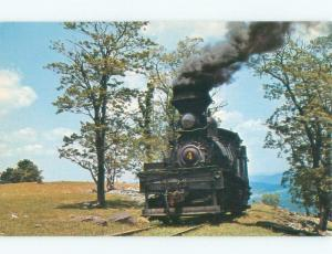 Pre-1980 CASS SCENIC RAILROAD STEAM TRAIN Green Bank & Snowshoe WV E5800-12