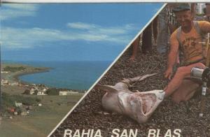 Postal:: Bahia San Blas-Argentina