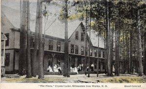 LPS26 Gilmanton Iron Works New Hampshire The Pines Crystal Lake  Postcard