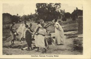 tanzania, ZANZIBAR, Natives Pumping Water (1920s) Postcard