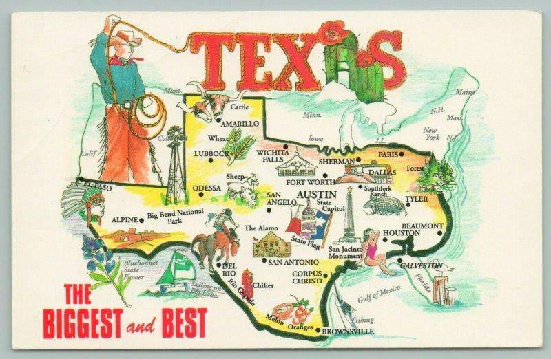 Texas~State Map~Cowboy Lassos Texas~Cactus A~Cowboyw-Bathing Beauty~1960s