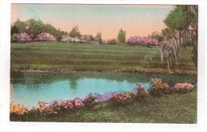 CHARLESTON, South Carolina, 1900-1910's; Middleton Place Gardens, The Terraces