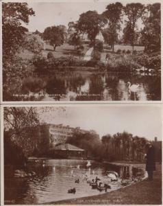St Stephens Green Peoples Gardens Lake 2x Duck Swans Irish Real Photo Postcard s