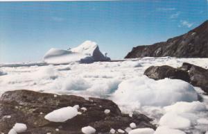 Ice Berg , ST. ANTHONY , Newfoundland , Canada , 1974 in July