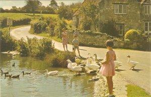 Children. Feedding time at the duck pond  Lovely vintage Englishn postcard