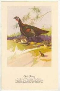 Wild Turkey,  20-40s