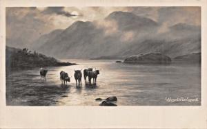 LOCH  LOMOND BEN LOMOND SCOTLAND-ELMER KEENE PHOTO-C WORCESTER CHIC SR POSTCARD
