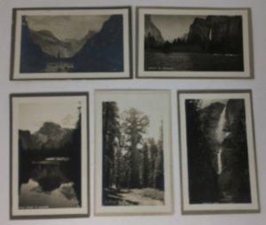 Lot of 5 Pillsbury Picture Co. Yosemite CA RPPC Postcard Real Photos AZO