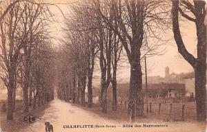 Champlitte France Allee des Marronniers Champlitte Allee des Marronniers