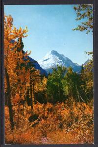 Autumn at Glacier National Park BIN