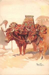 Portugal - Carro de bois - Douro Litoral, cattle bovine, Alberto Souzz 1953