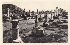 Tunisia Carthage Basilique de St-Cyprien