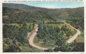 GATLINBURG, Tennessee, 1910-20s; New Found Gap Highway, In the Great Smoky Mo...