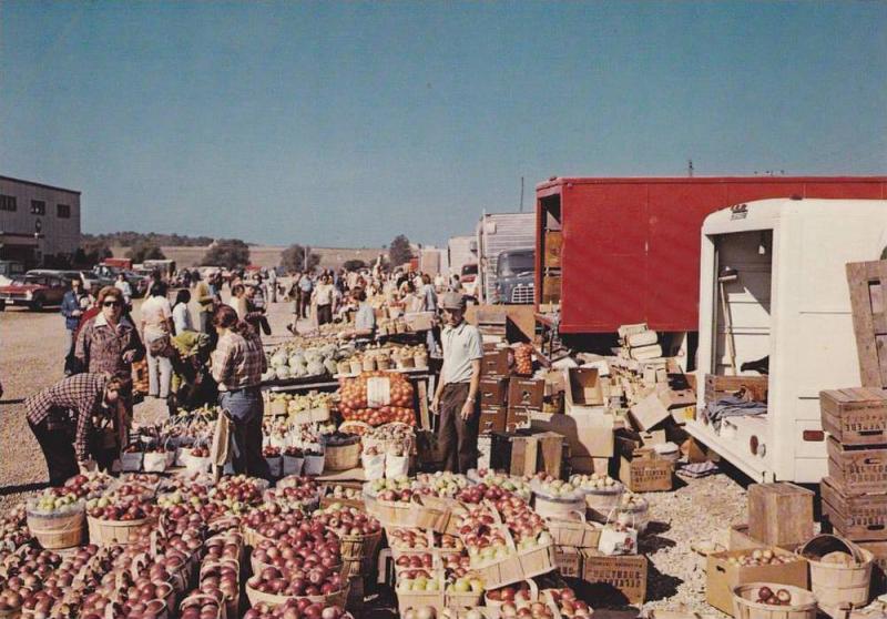 The Kitchener-Waterloo Stockyards and outdoor market, Waterloo, Ontario,  Can... / HipPostcard