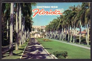 Greetings From Florida Street Scene