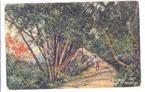 DOMINICA , A pass through the Mountains , 00-10s