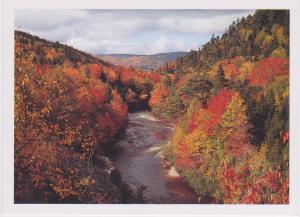 FALL COLOURS IN TALBOT VALE, NOVA SCOTIA
