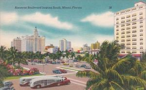 Florida Miami Buses On Biscayne Boulevard Looking South