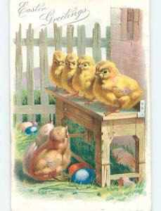 Pre-1907 easter LINE OF CHICKS SITTING ON THE BENCH k1971