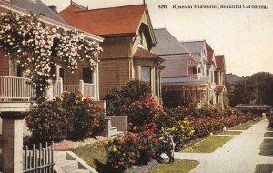 Roses in Midwinter, Beautiful California Victorian Homes c1910s Vintage Postcard