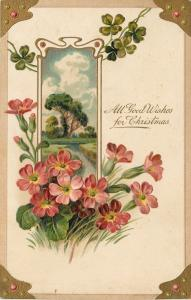 PFB~Christmas~Inset of Country Scene~Red Flowers~Embossed~Serie 7650~1908 PC