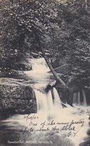 Chameleon Falls Wolf Creek Pottsville Pennsylvania Rotograph 1907