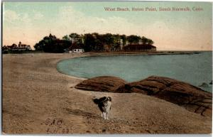 Dog on West Beach, Roton Point, South Norwalk CT Vintage Postcard P14
