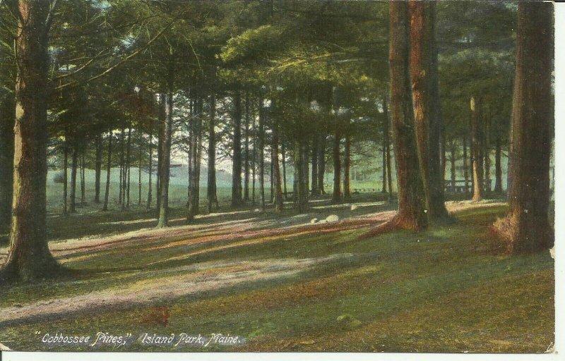 Island Park, Maine, Cobbossee Pines