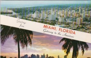 Florida Greetings From MIami Skyline