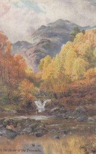 The Trossachs , Scotland , 00-10s ; TUCK 7350
