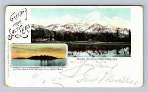 Greeting From Salt Lake, Wasatch Mountain Antelope Island, Utah Vintage Postcard