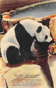 Happy, The Giant Panda St Louis, Missouri, USA Bear Unused