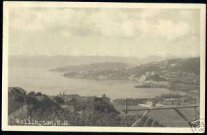 new zealand, WELLINGTON, Panorama (ca. 1930-50) RPPC