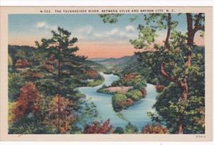 North Carolina The Tuckaseigee River Between Sylva and Bryson City